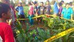Mayat Tanpa Identitas Ditemukan di Tengah Sawah Jagung
