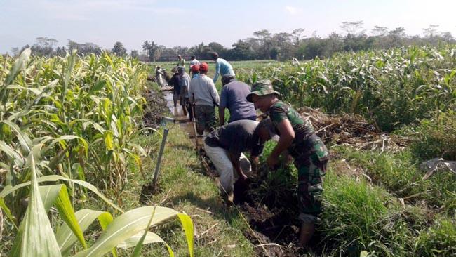 Tingkatkan Ketahanan Pangan, Babinsa Talangagung Bersihkan Saluran Irigasi