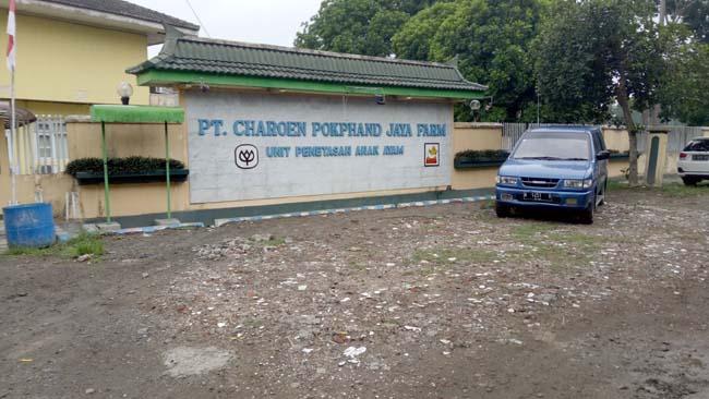 Limbah Cangkang Telur Dikeluhkan, PT Charoen Pok-Phan Lempar Tanggungjawab ke Vendor
