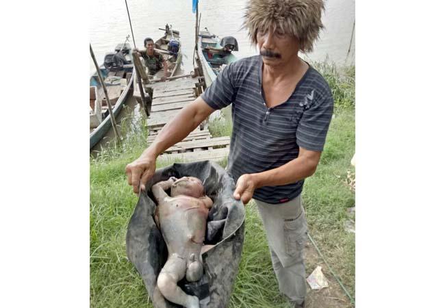 Bayi Tewas Mengapung di Sungai Brantas Porong