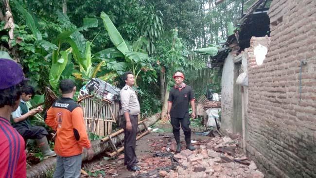 Pohon tumbang menimpa rumah warga akibat diterpa hujan dan angin kencang.