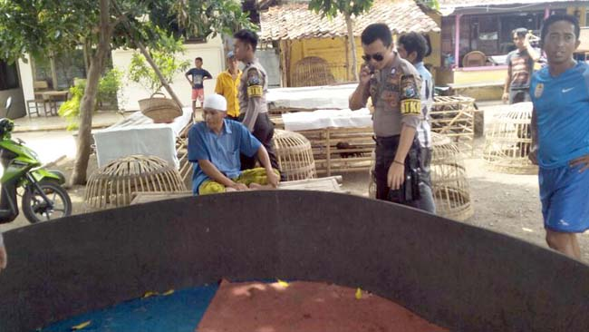 Satsabhara Polres Situbondo Bubarkan Sabung Ayam di Karangasem