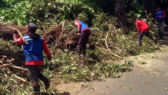 Longsor Penyumbang Terbanyak Bencana Alam di Kota Batu Sepanjang 2017
