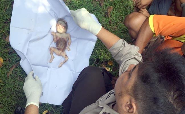 Heboh Mayat Bayi Mengapung di DAM Curah Malang