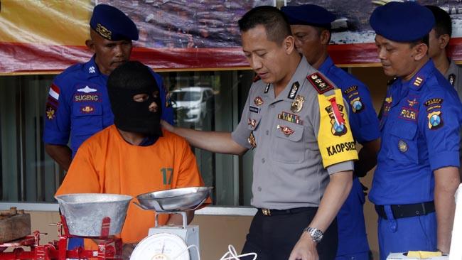 Menangkap  babylobster ,Polres jember  akan beri  sanksi  Pidana  6 Tahun Penjara