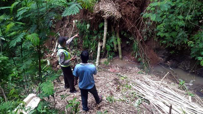 Tebing Longsor, Pria di Dau Tertusuk Potongan Bambu