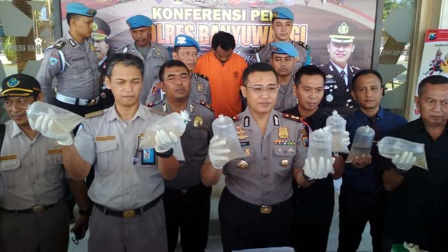 Bawa Baby Lobster, Warga Desa Gumayun Jateng Ditahan Polsek KPT Ketapang