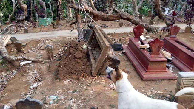 Polsek Kasembon Usut Perusakan 20 Kijing Makam di Desa Pait