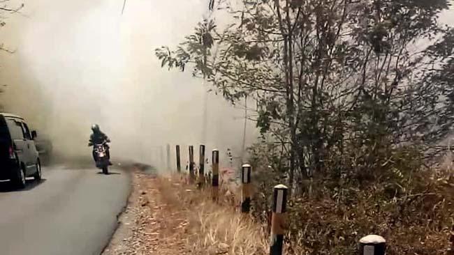Akibat Puntung Rokok, Hutan Jati Gunung Geger Pagak Terbakar