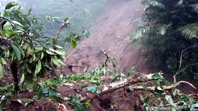 Eko Sunarko Lereng pegunungan Argopuro Jember Akan MURKA Jika Hutan Terus Ditebang