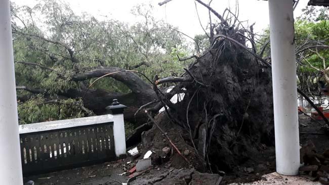 Puluhan Rumah Warga di Balongbendo Rusak Diterjang Puting Beliung