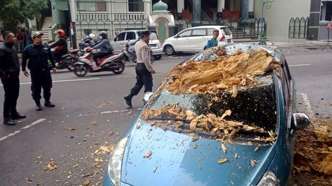 Jazz Ringsek Tertimpa Ranting Pohon di Alun-alun Kota Malang