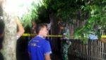 Kakek Pikun Ditemukan Tewas Menggantung di Pohon Blimbing