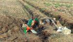 Pelapor Penyerobotan Tanah Bengkok, Siap Laporkan Polres Lamongan ke Propam Polda Jatim