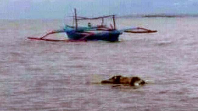 Bunuh Diri di Kali Porong, Jenasah Ditemukan di Perairan Wongsorejo Banyuwangi