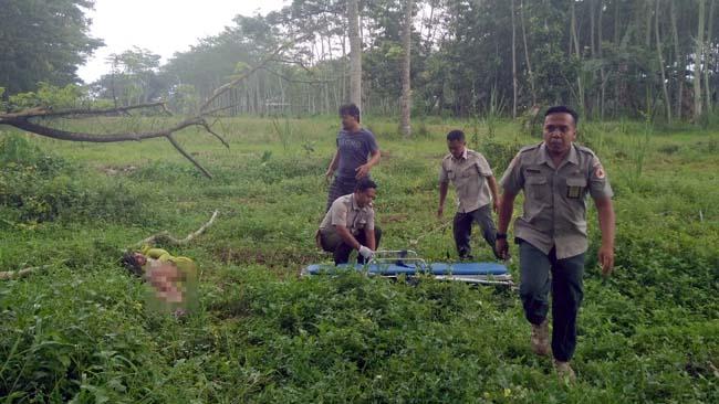 Pencari Rumput, Satpam, Warga PKL, PNS, BPBD dan Polisi Selamatkan Nyawa Wanita di Stadion Kanjuruhan