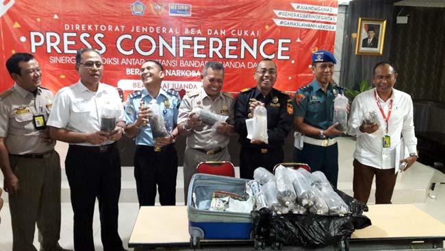 BABY LOBSTER - Bea Cukai Juanda berhasil menggagalkan penyelundupan baby lobster sebanyak 113.300 ekor senilai Rp 17,3 miliar yang bakal diterbangkan pesawat Garuda tujuan Singapura dan dibawa 2 penumpang, Senin (24/06/2019)